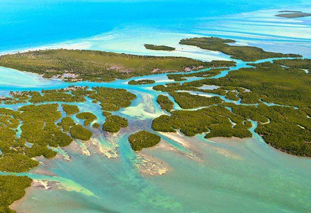 Key Largo | Primera isla de la Florida Keys