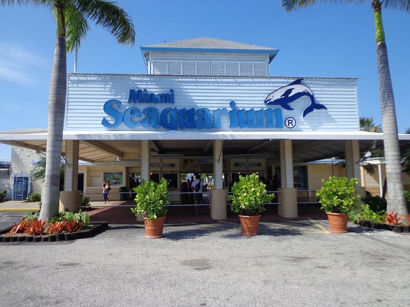 Miami Seaquarium: el mayor acuario de Florida