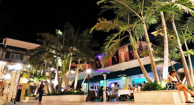 Cómo es Coconut Grove en Miami
