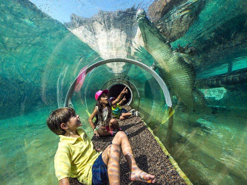 Niños en Zoológico de Miami Zoo en Florida