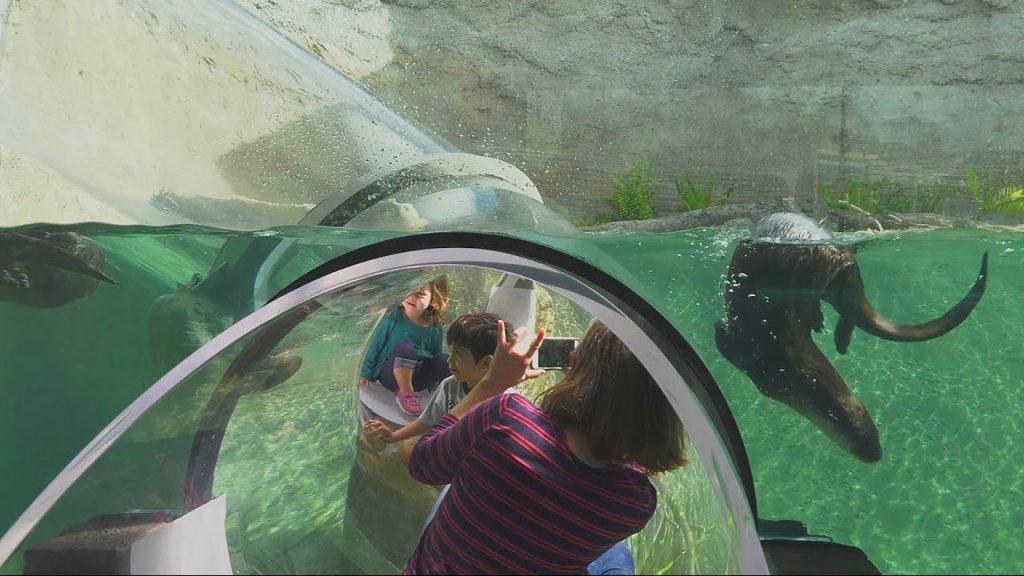 Familia en Zoológico de Miami Zoo en Florida